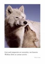 Wolf Harmony
