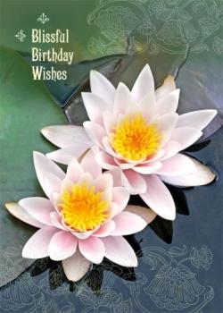 Blissful Birthday