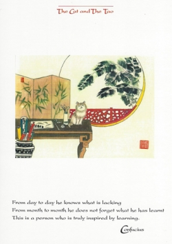 Cat & The Tao