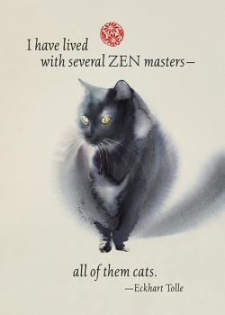 New - Zen